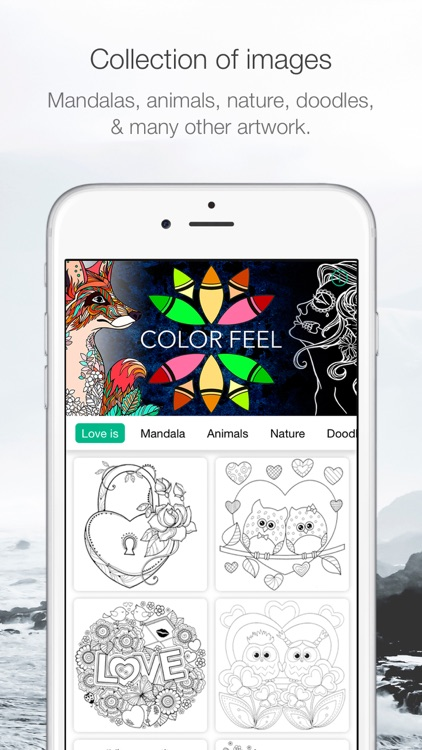 ColorFeel Coloring Book