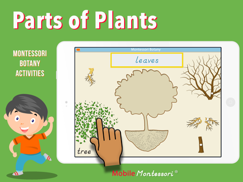 Learn Botany - Parts of Plants - náhled