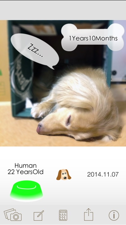 Dog Age Save pictures calculating screenshot-3