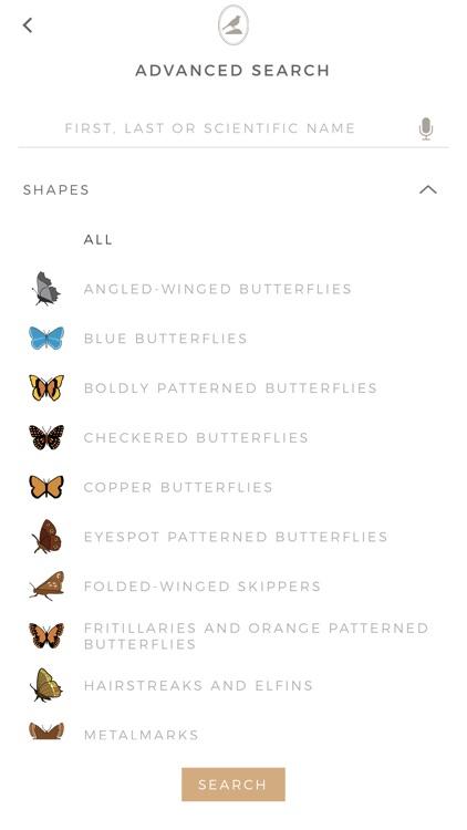 Fieldstone Guide: Butterflies screenshot-6