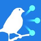 Tweetlong icon