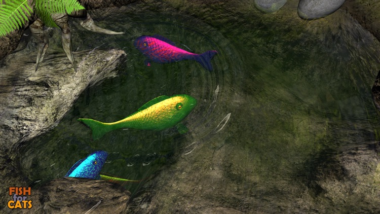 Fish for Cats: 3D fishing game for cats