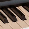 ピアノの和音チャート - iPadアプリ