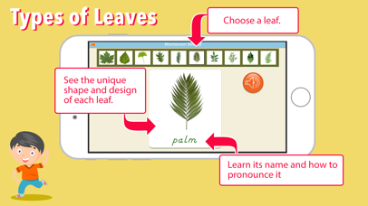 Learn Botany - Parts of Plants screenshot 5