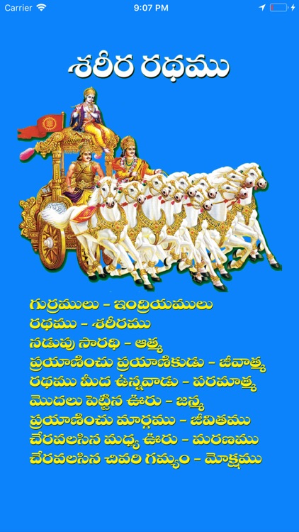 Bhagavadgeetha (Telugu) screenshot-4