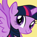 158.My Little Pony AR Guide