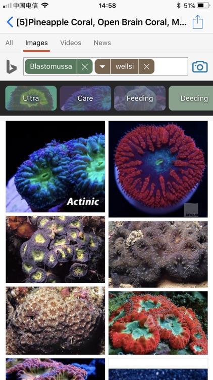 Coral Reefs Bible screenshot-4