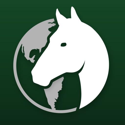 Global Stallions