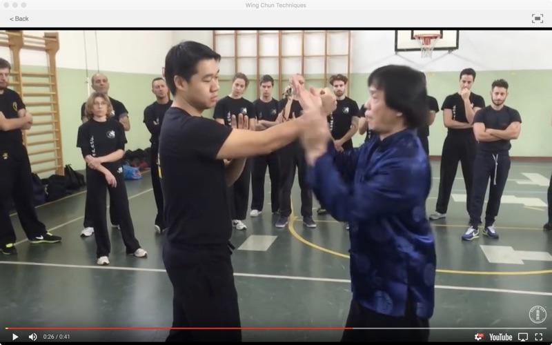 Wing Chun Techniques screenshot 3