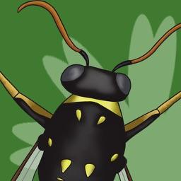 Bugs Away!