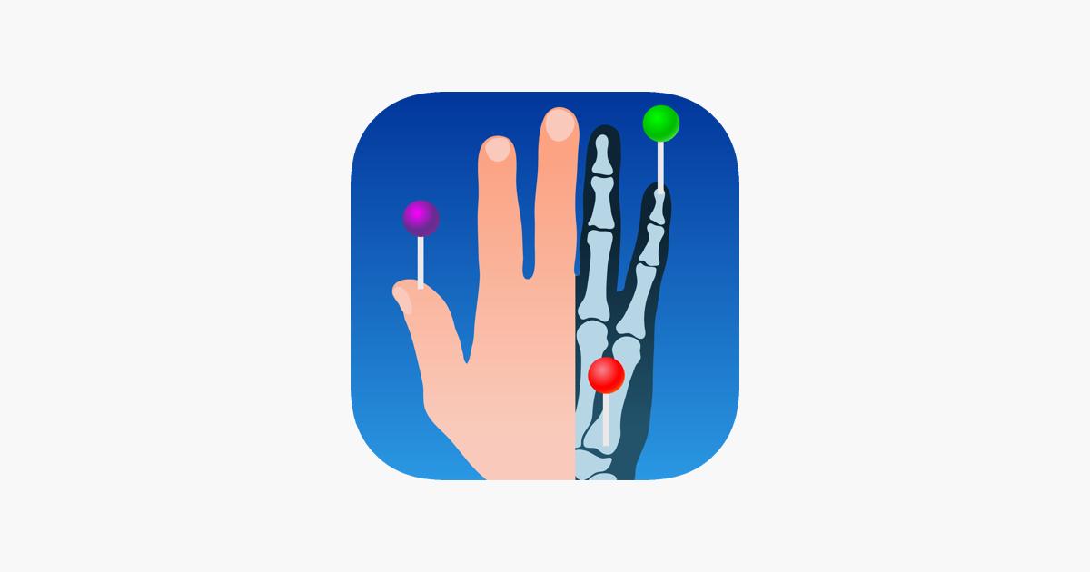 IMAIOS e-Anatomy en App Store