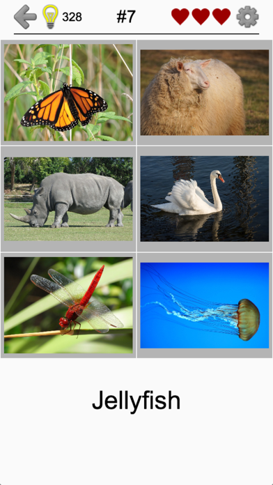 Easy Pictures - Fun Photo-Quiz screenshot 2