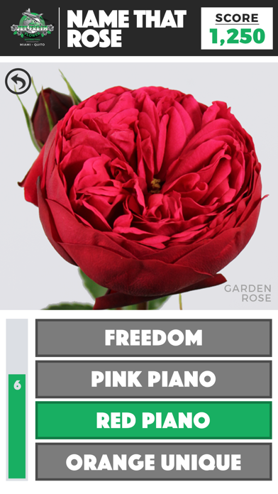 Name That Rose screenshot two