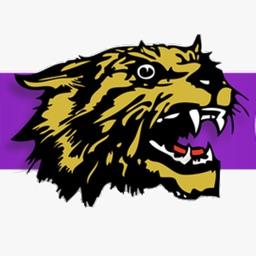 The Clarksville Wildcat