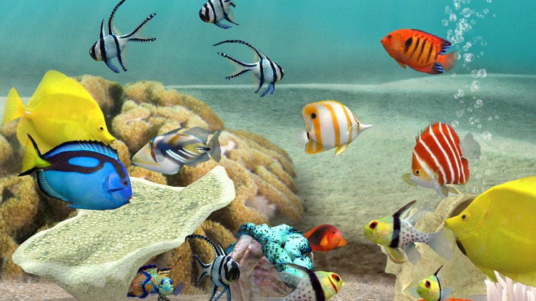 MyReef 3D Aquarium 3 screenshot-3