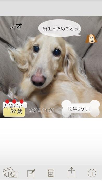 ワンコいくつ?愛犬の年齢を計算して写真で保存!スクリーンショット4