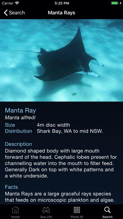 Sea Life Australia screenshot-3