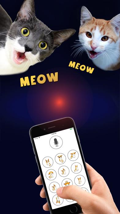 猫翻訳者デラックスのおすすめ画像3