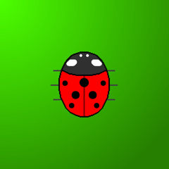 Touch the Ladybird
