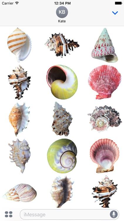 Shells!
