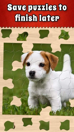 Jigsaw Puzzle Bug on the App Store
