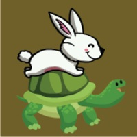 Codes for Jump On Turtle Hack