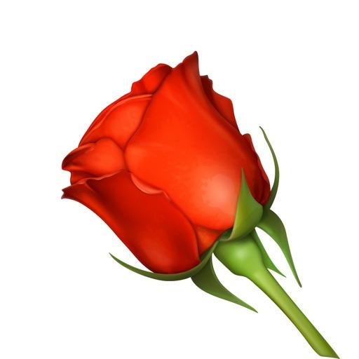 Romantic Roses Lovely Sticker
