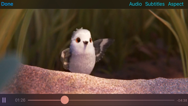 Rigel Video Player