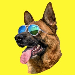 German Shepherd GSD GSemoji