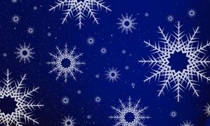 Amazing Snowflakes