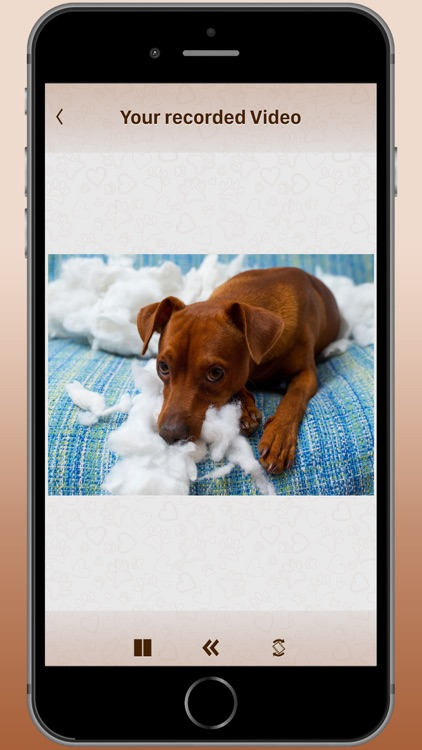 Cam2Pet - Pet | Dog Camera App screenshot-4