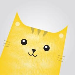 Cat Bomb- photobomb with CATS