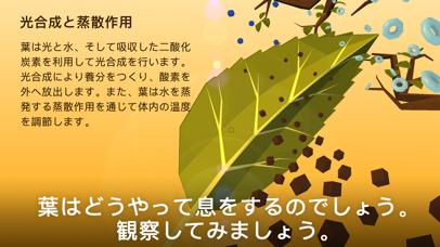 NAMOO – 植物の神秘のおすすめ画像3