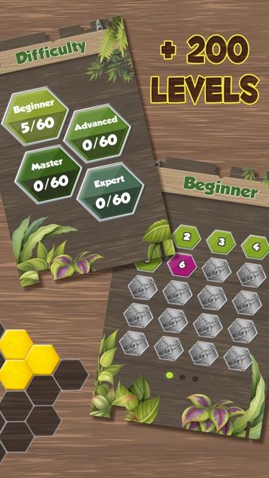 点击获取Puzzle Solving - Block Game