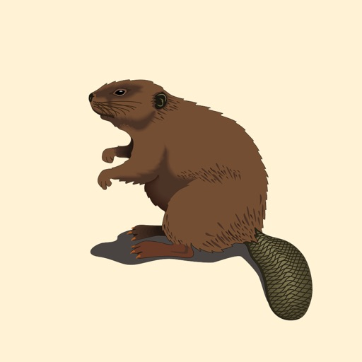 Best Beaver Stickers