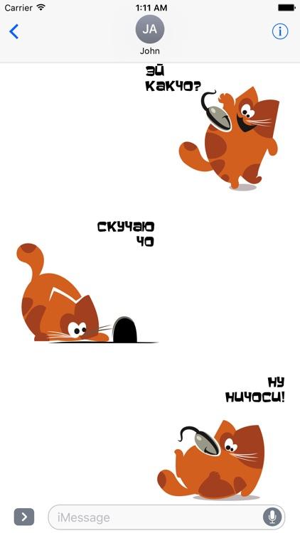 Кот Чо!