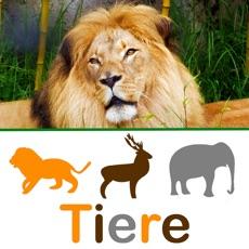 Activities of TipTap Tiere lernen für Kinder