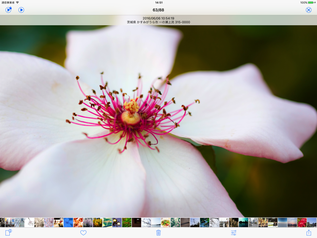 Pictream - photo browser Screenshot