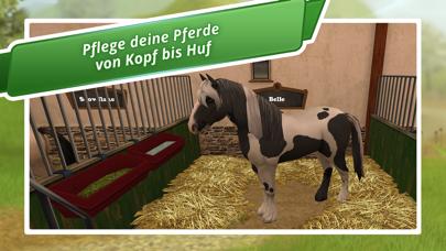 Herunterladen Horse World - Mein Reitpferd für Android