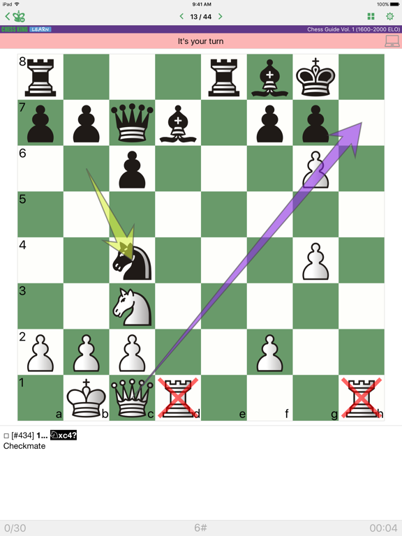 Chess Strategy and Tactics