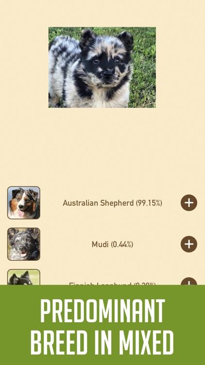 DogSnap - Dog Breed Identifier screenshot-4