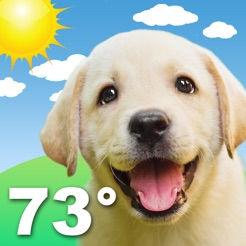Weather puppy forecast dogsapp store weather puppy forecast dogs 4 voltagebd Choice Image