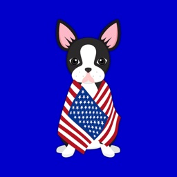 Black Boston Terrier Emoji