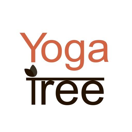Yoga Tree - Baltimore