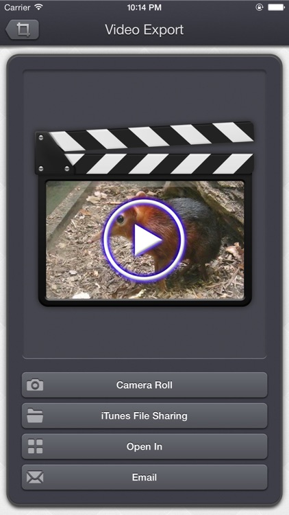 Video Crop & Zoom - HD screenshot-4