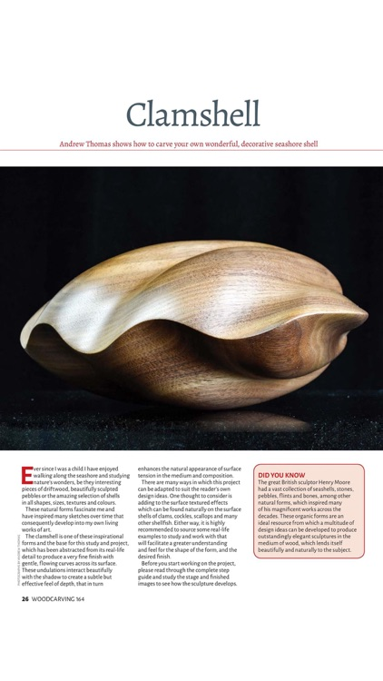 Woodcarving Magazine screenshot-4