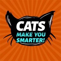 Cats Make You Smarter!