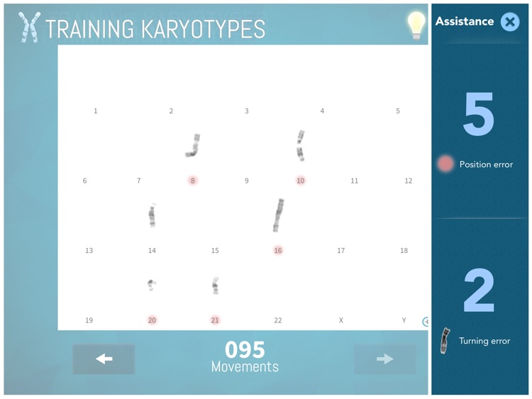 Training Karyotypes Lite