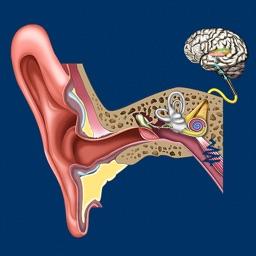 Ear ID
