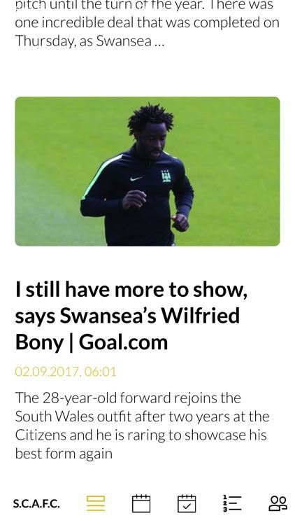 Team Swansea City